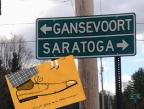Gans Saratoga